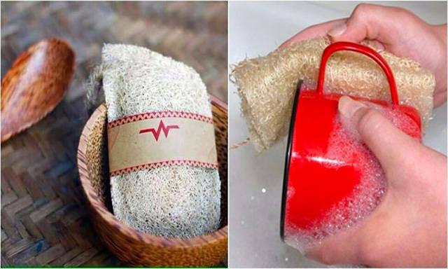 Miếng rửa biển không chỉ dùng để rửa chén